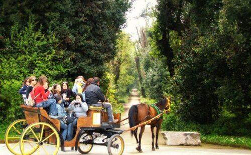 reggia-caserta-bosco-vecchio-carrozza