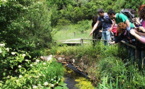 San Silvestro WWF Oasis